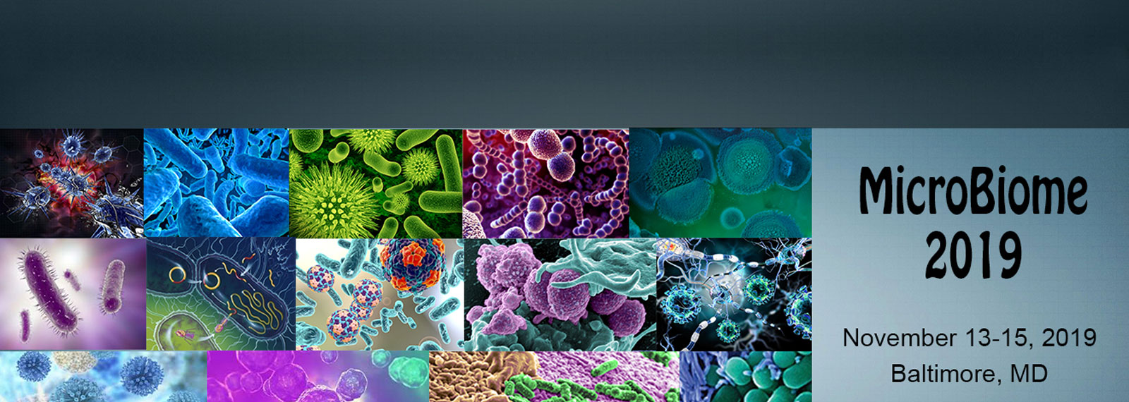 Microbial Research and Applications Conference 2019| Microbial
